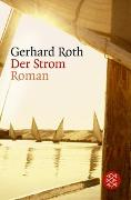 Cover-Bild zu Roth, Gerhard: Der Strom