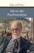 Cover-Bild zu Freud, Sigmund: Abriss der Psychoanalyse