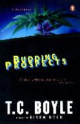 Cover-Bild zu Boyle, T.C.: Budding Prospects