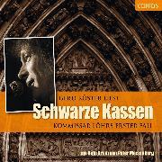 Cover-Bild zu Schwarze Kassen (Audio Download) von Meisenberg, Peter
