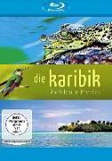 Cover-Bild zu Pulverer, Daniela: Die Karibik - Überleben im Paradies