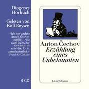 Cover-Bild zu Cechov, Anton: Erzählung eines Unbekannten