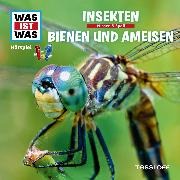 Cover-Bild zu Was ist was Hörspiel: Insekten/ Bienen & Ameisen (Audio Download) von Haderer, Kurt