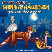 Cover-Bild zu Naumann, Kati: 62: Warum sind Füchse so schlau? (Audio Download)