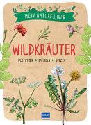 Cover-Bild zu Mein Naturführer - Wildkräuter von Couplan, Francois