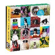 Cover-Bild zu Galison (Geschaffen): Momo The Dog 500 Piece Puzzle