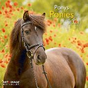 Cover-Bild zu Ponies 2021 A&I INT 30x30