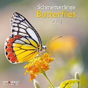 Cover-Bild zu Butterflies 2021 A&I INT 30x30