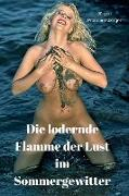 Cover-Bild zu Die lodernde Flamme der Lust im Sommergewitter (eBook) von Prommersberger, Jürgen