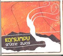 Cover-Bild zu Grüne Zweig