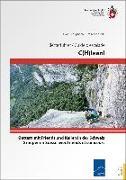 Cover-Bild zu C(H)lean