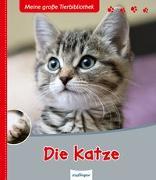 Meine große Tierbibliothek: Die Katze von Frattini, Stéphane