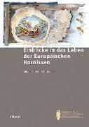 Cover-Bild zu Einblicke in das Leben der Europäischen Hornisse von Kornmilch, Johann-Christoph