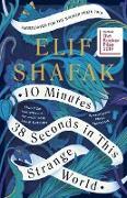Cover-Bild zu eBook 10 Minutes 38 Seconds in This Strange World