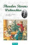 Cover-Bild zu Theodor Storms Weihnachten von Eversberg, Gerd