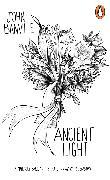 Cover-Bild zu Ancient Light von Banville, John