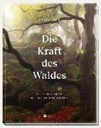 Cover-Bild zu Die Kraft des Waldes von Iding, Doris