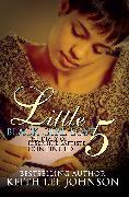 Cover-Bild zu Little Black Girl Lost 5 von Johnson, Keith Lee