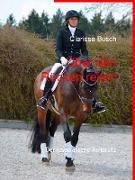 Cover-Bild zu eBook Über den Rücken reiten
