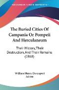 Cover-Bild zu The Buried Cities Of Campania Or Pompeii And Herculaneum von Adams, William Henry Davenport
