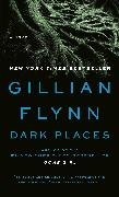 Cover-Bild zu Flynn, Gillian: Dark Places (EXP)