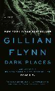 Cover-Bild zu Flynn, Gillian: Dark Places (eBook)