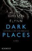 Cover-Bild zu Flynn, Gillian: Dark Places - Gefährliche Erinnerung (eBook)