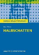 Cover-Bild zu Halbschatten (eBook) von Timm, Uwe