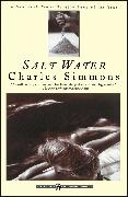 Cover-Bild zu Simmons, Charles: Salt Water