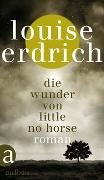 Cover-Bild zu Erdrich, Louise: Die Wunder von Little No Horse
