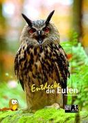 Cover-Bild zu Schmidt, Thomas: Entdecke die Eulen