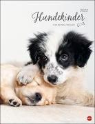 Cover-Bild zu Hundekinder Posterkalender 2022 von Wegler, Monika