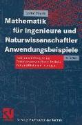 Cover-Bild zu Mathematik für Ingenieure und Naturwissenschaftler Anwendungsbeispiele (eBook) von Papula, Lothar