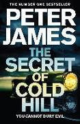 Cover-Bild zu James, Peter: The Secret of Cold Hill
