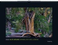 Cover-Bild zu KUNTH Verlag (Hrsg.): Alte Bäume - Sinnbilder des Lebens 2022