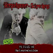 Cover-Bild zu Folge 55: Tkkg 108 - Das Konzert bei den Ratten (Audio Download)