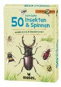 Cover-Bild zu 50 heimische Insekten & Spinnen von Kessel, Carola von (Text von)