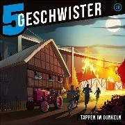 Cover-Bild zu Tappen im Dunkeln (Audio Download) von Schuffenhauer, Tobias