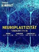 Cover-Bild zu Spektrum Kompakt - Neuroplastizität (eBook) von Verlagsgesellschaft, Spektrum der Wissenschaft