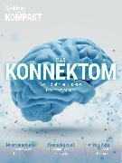 Cover-Bild zu Spektrum Kompakt - Das Konnektom (eBook)