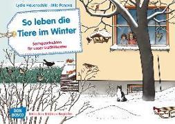 Cover-Bild zu So leben die Tiere im Winter. Kamishibai Bildkartenset von Hauenschild, Lydia