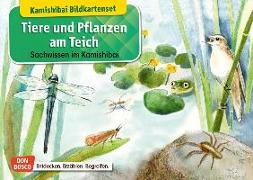Cover-Bild zu Tiere und Pflanzen am Teich. Kamishibai-Bildkartenset von Stöckl-Bauer, Katharina