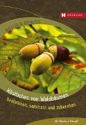 Cover-Bild zu Köstliches von Waldbäumen von Strauß, Markus