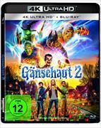 Cover-Bild zu Gänsehaut 2 von Sandel, Ari (Reg.)