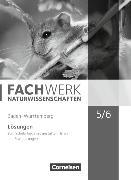 Cover-Bild zu Fachwerk Naturwissenschaften 5./6. Schuljahr. Biologie, Naturphänomene und Technik Lösungen. BW von Baur, Thomas