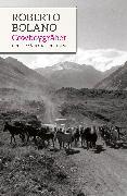 Cover-Bild zu Die Cowboy-Gräber von Bolaño, Roberto