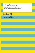 Cover-Bild zu Storm, Theodor: Der Schimmelreiter. Textausgabe mit Kommentar und Materialien