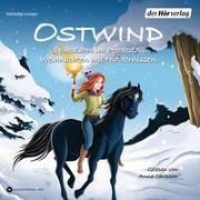 Cover-Bild zu THiLO: Ostwind. Spukalarm im Pferdestall & Weihnachten mit Hindernissen