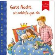 Cover-Bild zu Taube, Anna: Ich bin schon groß: Gute Nacht, ich schlafe gut ein