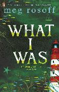 Cover-Bild zu Rosoff, Meg: What I Was